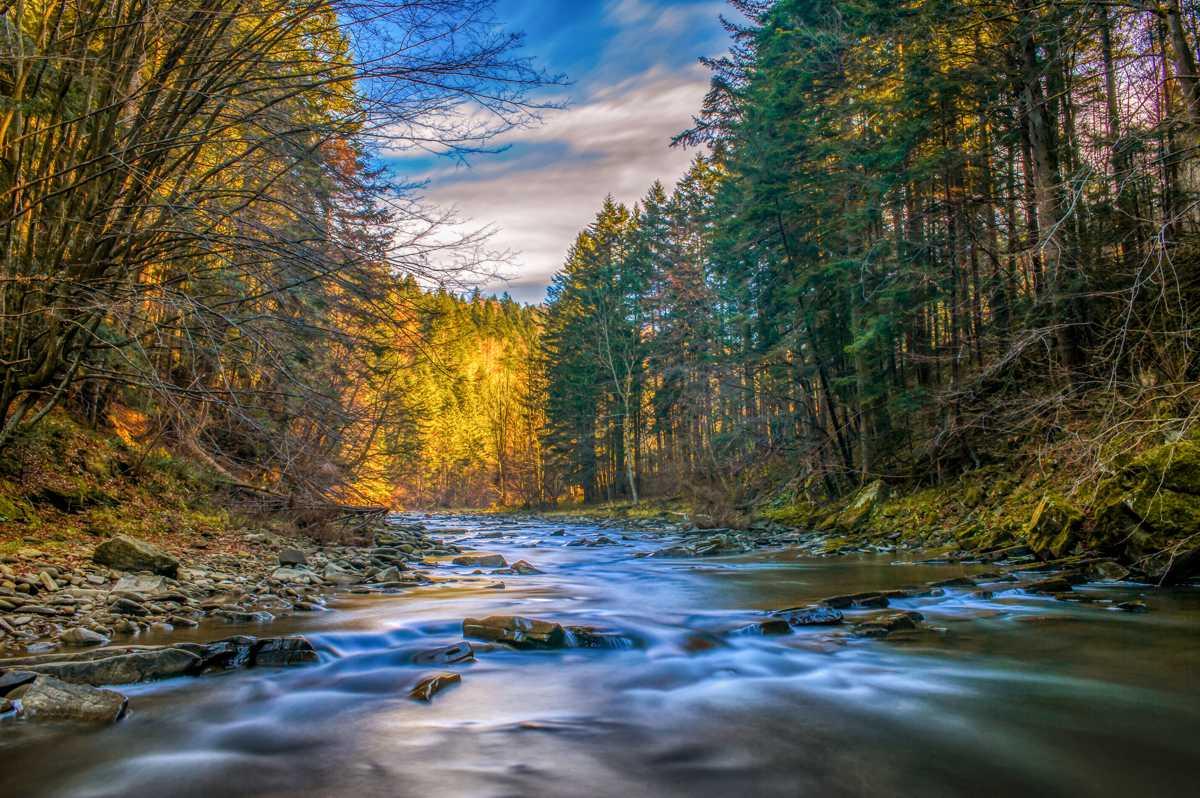 Atrakcje Podkarpacia - rzeka